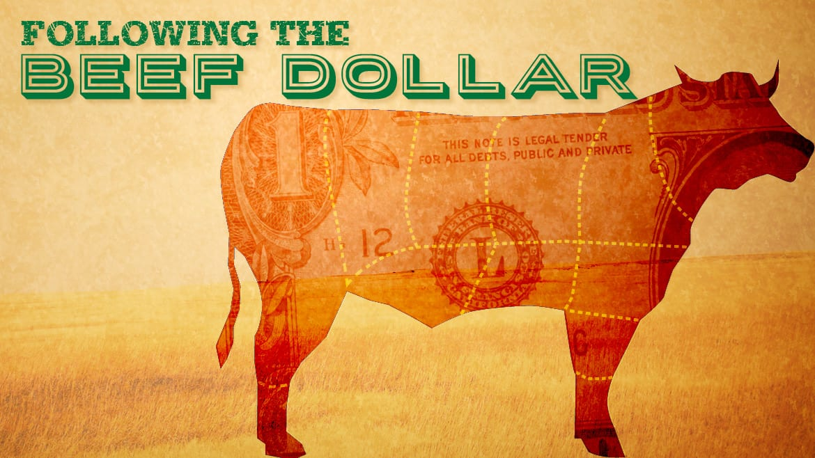 Following the Beef Dollar