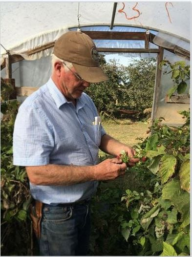 Dan Kuhn is one of the state's largest wholesale growers of fruits and vegetables, thanks to a healthy water supply in Republic County from the Republican River. (Photo by Sarah Green)