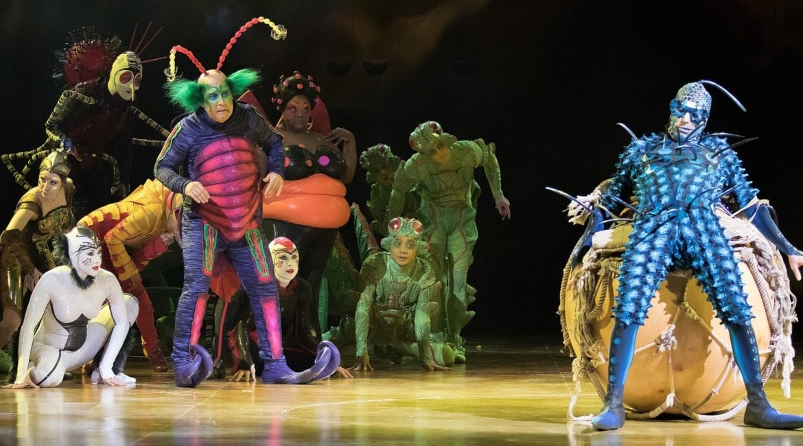 The cast of a Cirque du Soleil show on stage.