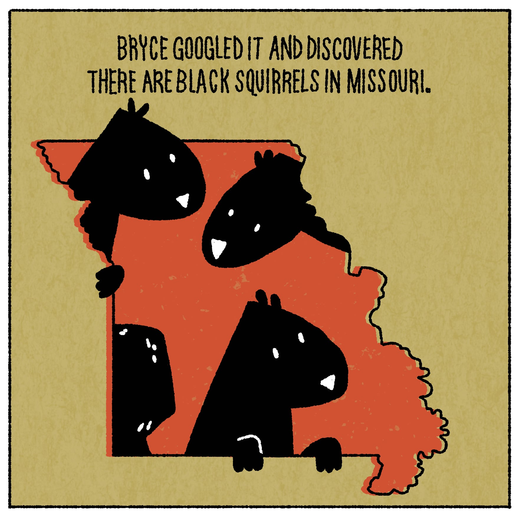 Bryce Googled it and discovered there are black squirrels in Missouri.