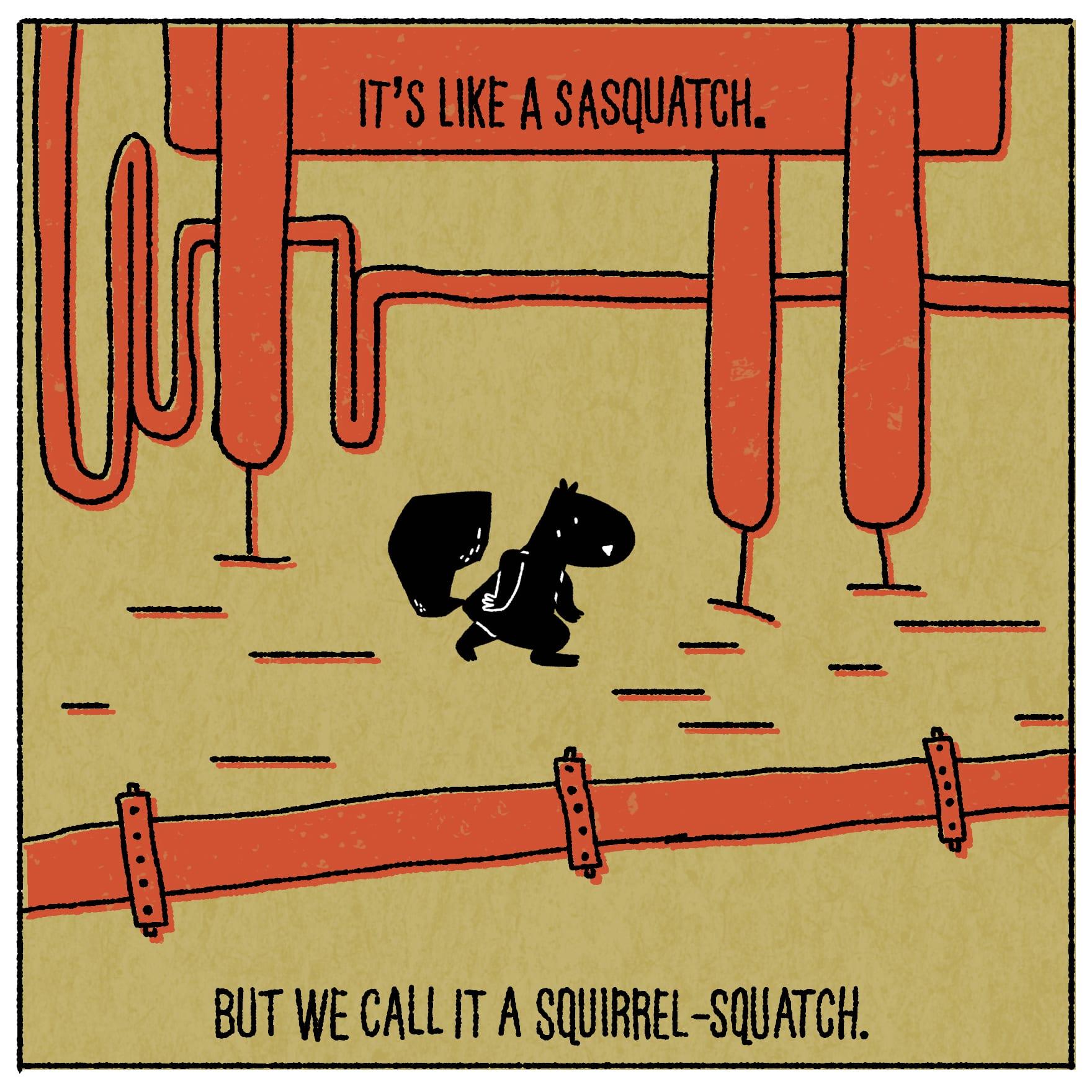 It's like a sasquatch, but we call it a squirrel-squatch.