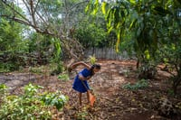 Gelmy, one of the five kids in Maria de los Angeles Tun Burgosa's family, rakes the backyard of their home in Yucatan, Mexico. Adriana Zehbrauskas for NPR